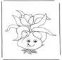 Cebulka kwiatowa