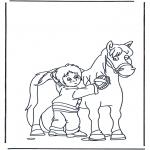 Zwierzęta - Czesanie konia