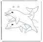 Delfiny 1
