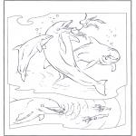 Zwierzęta - Delfiny 2