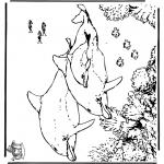 Zwierzęta - Delfiny 5