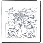Zwierzęta - Gepard