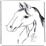 Zwierzęta - Głowa konia 3