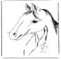 Głowa konia 3
