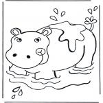 Zwierzęta - Hipopotam w wodzie