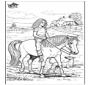 Jazda na koniu 5