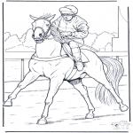 Zwierzęta - Jockey na Koniu