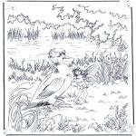 Zwierzęta - Kaczuszka i jedenaście
