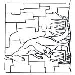 Zwierzęta - Kangur 1