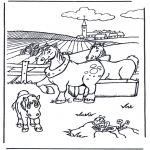 Zwierzęta - Kolorowanki konie