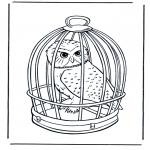 Zwierzęta - Kolorowanki - sowa