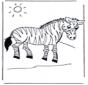 Kolorowanki zebra