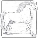 Zwierzęta - Koń 3