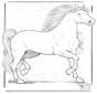 Koń 3