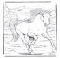 Koń 4