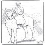 Zwierzęta - Koń i Dama