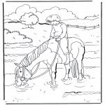 Zwierzęta - Koń w wodzie 1
