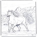 Zwierzęta - Koń w Wodzie 2