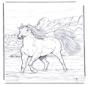 Koń w Wodzie 2