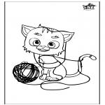 Zwierzęta - Kota 5