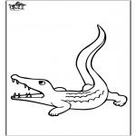 Zwierzęta - Krokodyl 3