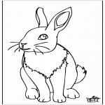 Zwierzęta - Króliczek 4