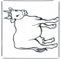 Krowa 2