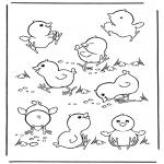 Zwierzęta - Kurczęta 2