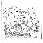 Tematy - Kury z jajami