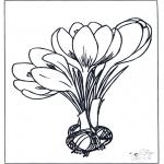 Różne - Kwiaty życzenia przyjścia do zdrowia 1