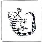 Zwierzęta - Legwan