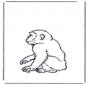 Małpa 2
