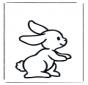 Mały królik 1