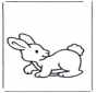 Mały królik 2