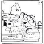 Zwierzęta - Miś polarny i lew morski