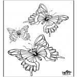 Zwierzęta - Motyl 5