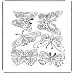 Zwierzęta - Motyle 1