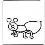 Zwierzęta - Mrówka