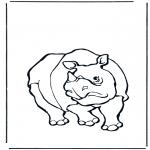 Zwierzęta - Nosorożec