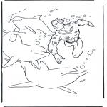 Zwierzęta - Nurkowanie przy delfinach