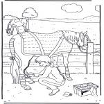 Zwierzęta - Opieka nad koniem