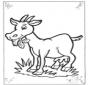 Owca 2