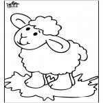 Zwierzęta - Owieczka 4