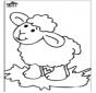 Owieczka 4