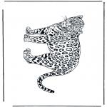 Zwierzęta - Pantera 2