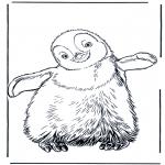 Zwierzęta - Pingwin 3