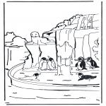 Zwierzęta - Pingwiny 1