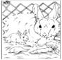 Połącz punkty - królik
