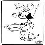 Zwierzęta - Psy 3
