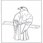 Zwierzęta - Ptak drapieżny na gałęzi